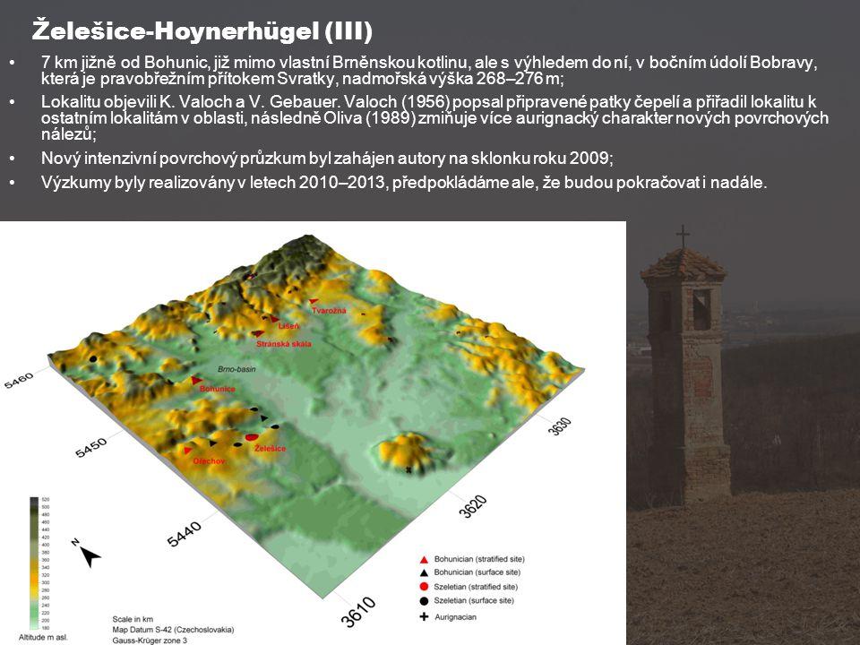 Želešice-Hoynerhügel (III)