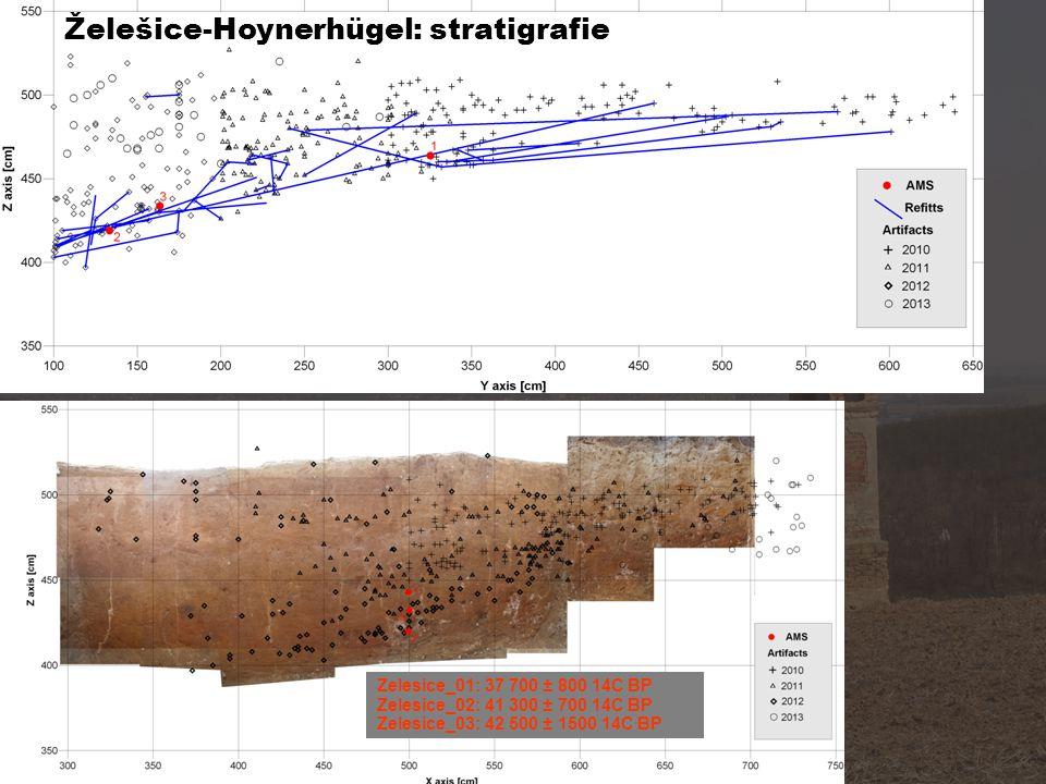 Želešice-Hoynerhügel: stratigrafie