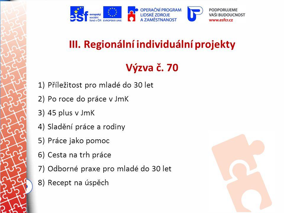 III. Regionální individuální projekty