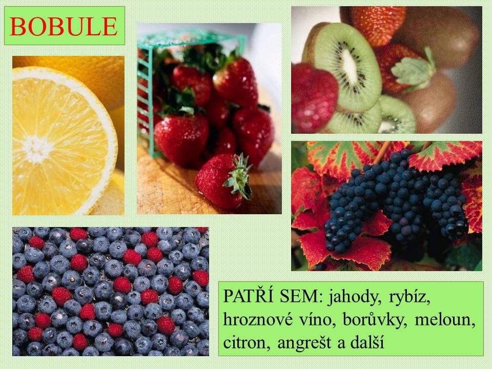 BOBULE PATŘÍ SEM: jahody, rybíz, hroznové víno, borůvky, meloun,