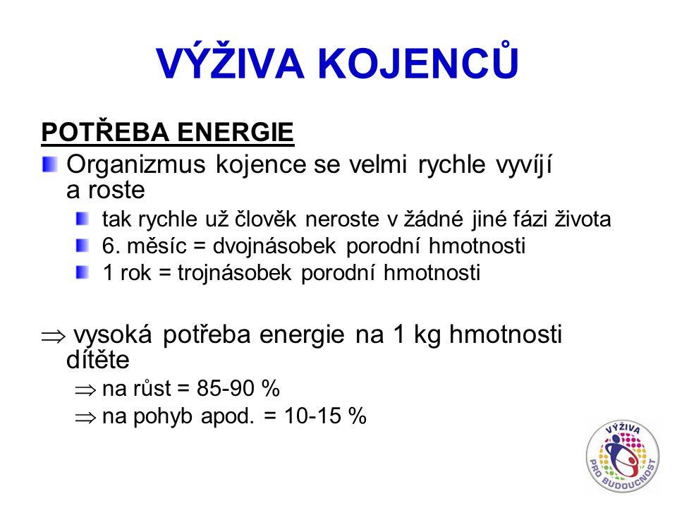 VÝŽIVA KOJENCŮ POTŘEBA ENERGIE