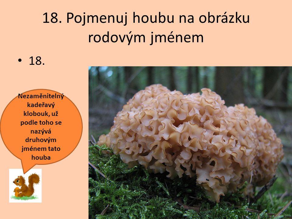 18. Pojmenuj houbu na obrázku rodovým jménem