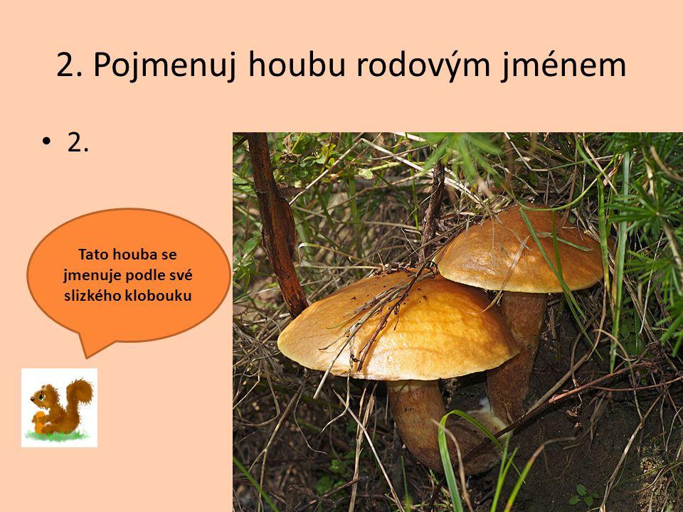 2. Pojmenuj houbu rodovým jménem
