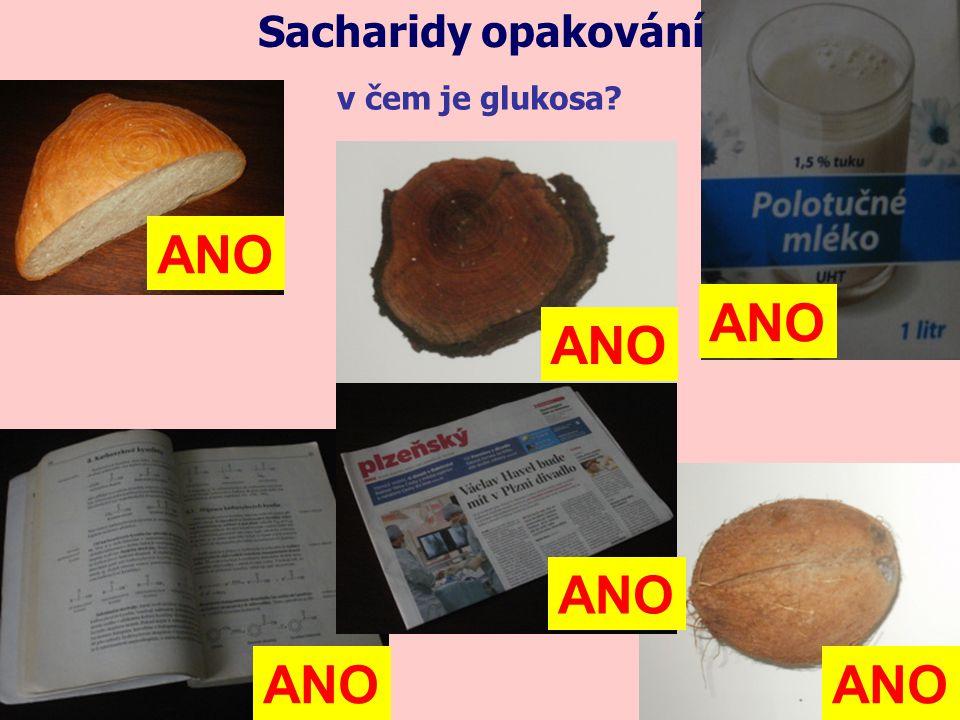 ANO ANO ANO ANO ANO ANO Sacharidy opakování v čem je glukosa