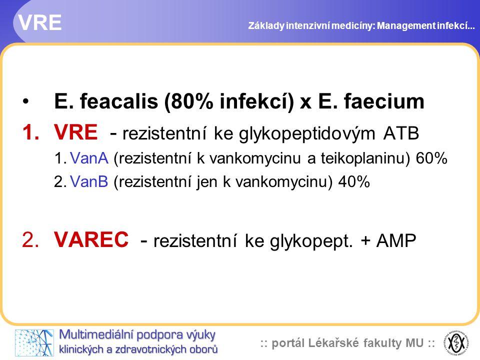 E. feacalis (80% infekcí) x E. faecium