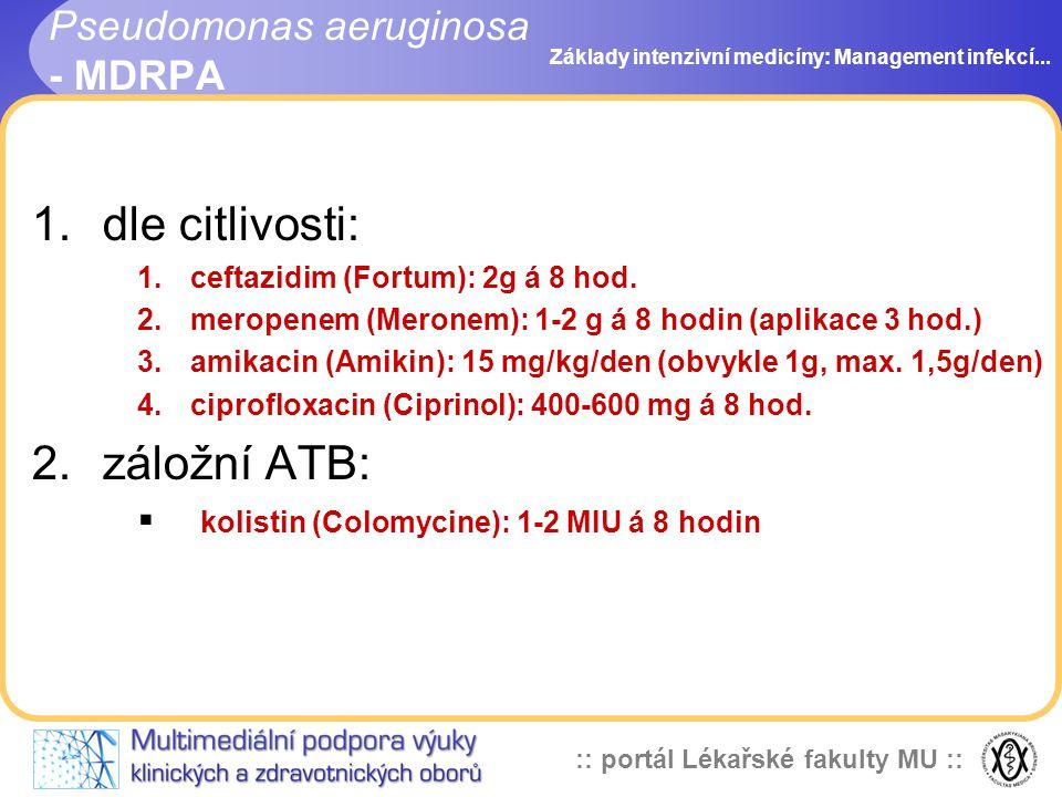 Pseudomonas aeruginosa - MDRPA