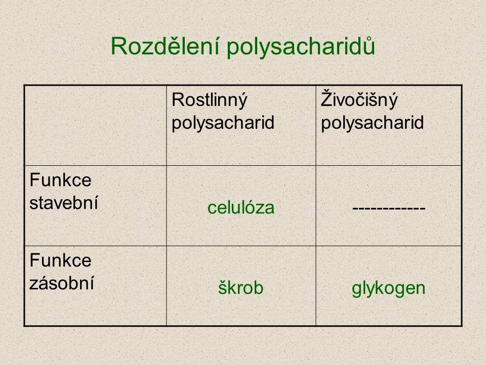 Rozdělení polysacharidů