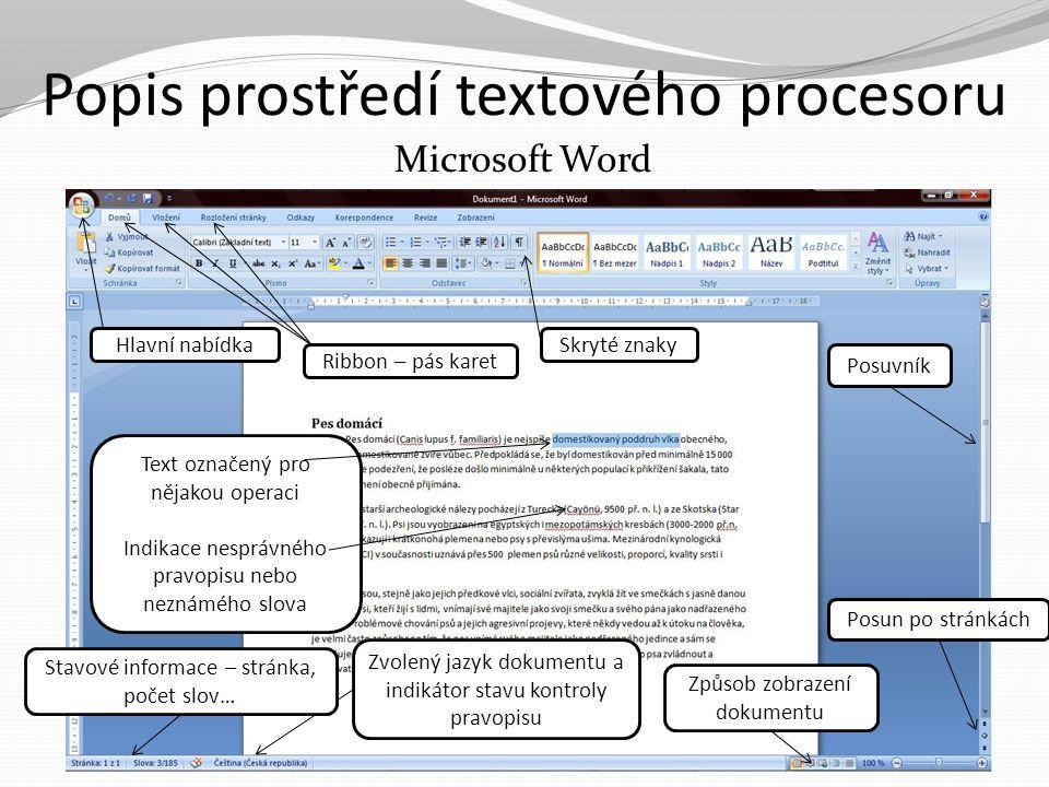 Popis prostředí textového procesoru