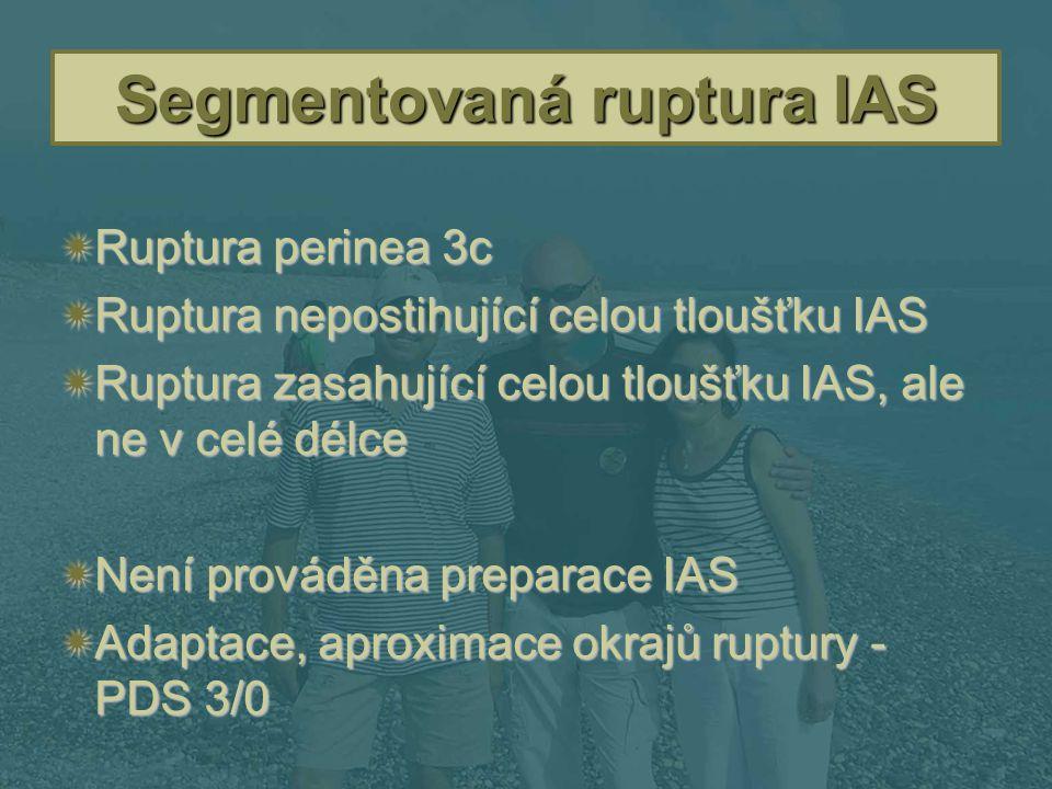 Segmentovaná ruptura IAS