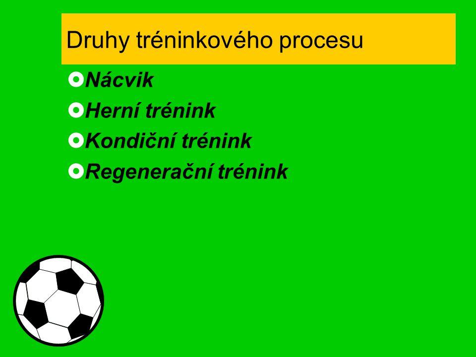 Druhy tréninkového procesu