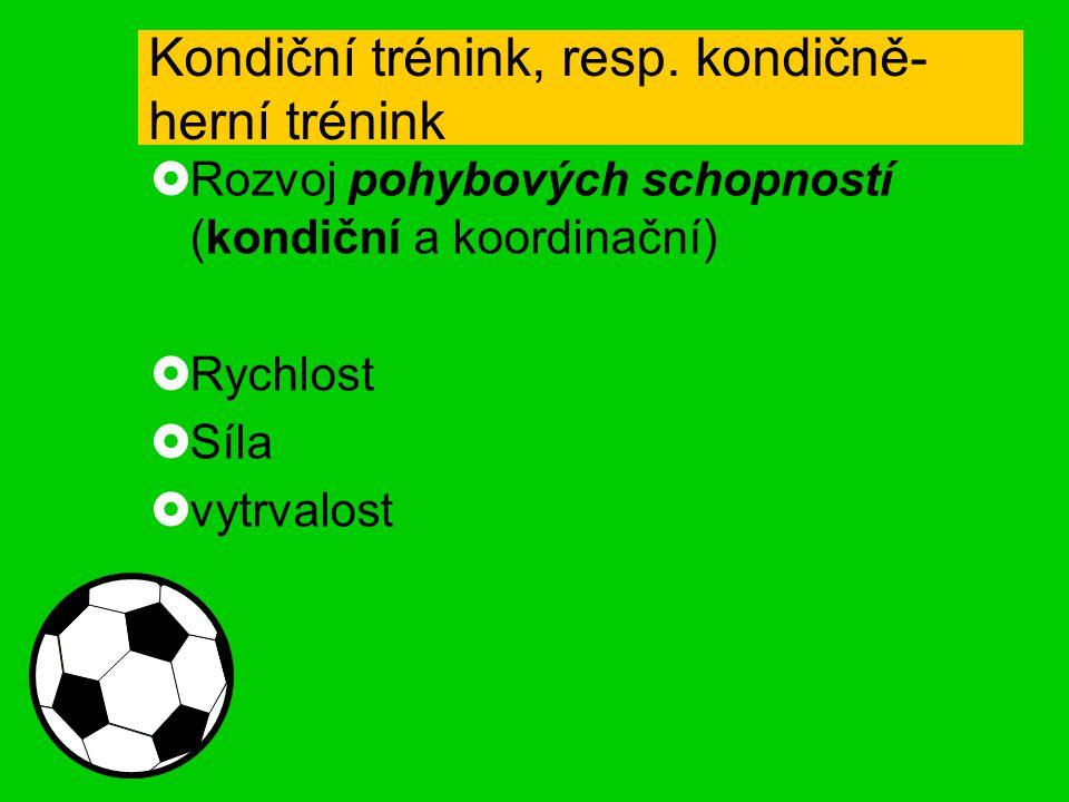 Kondiční trénink, resp. kondičně-herní trénink