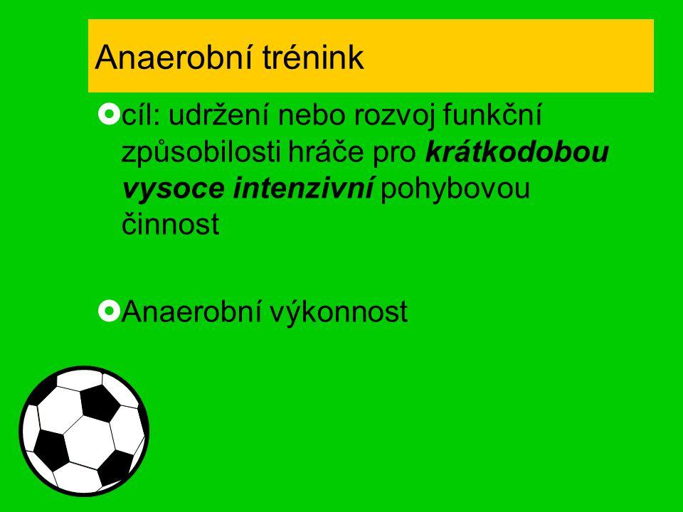 Anaerobní trénink cíl: udržení nebo rozvoj funkční způsobilosti hráče pro krátkodobou vysoce intenzivní pohybovou činnost.