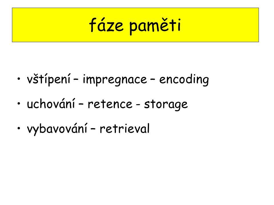 fáze paměti vštípení – impregnace – encoding