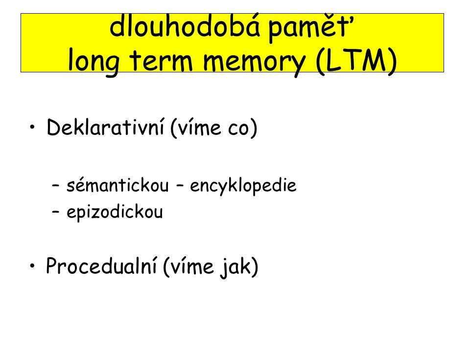 dlouhodobá paměť long term memory (LTM)
