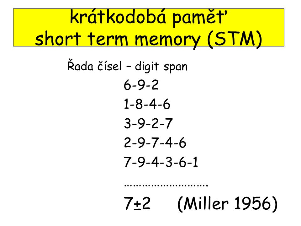 krátkodobá paměť short term memory (STM)