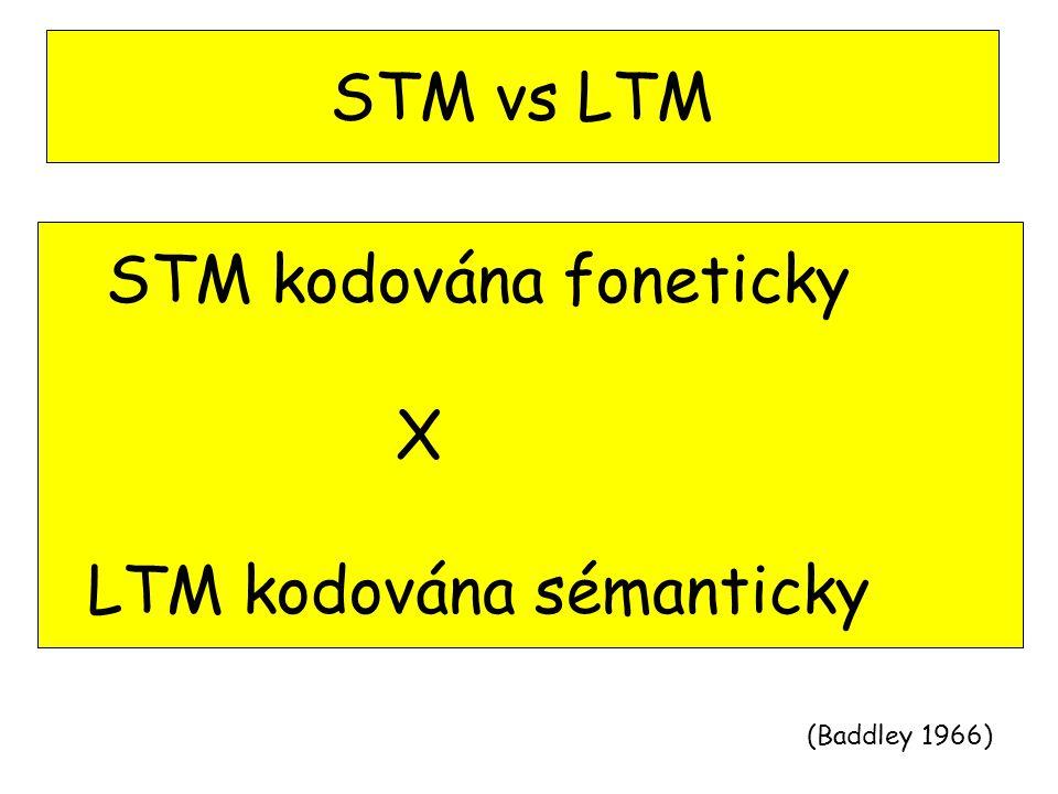 STM kodována foneticky X LTM kodována sémanticky