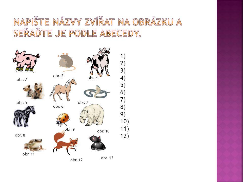 Napište názvy zvířat na obrázku a seřaďte je podle abecedy.