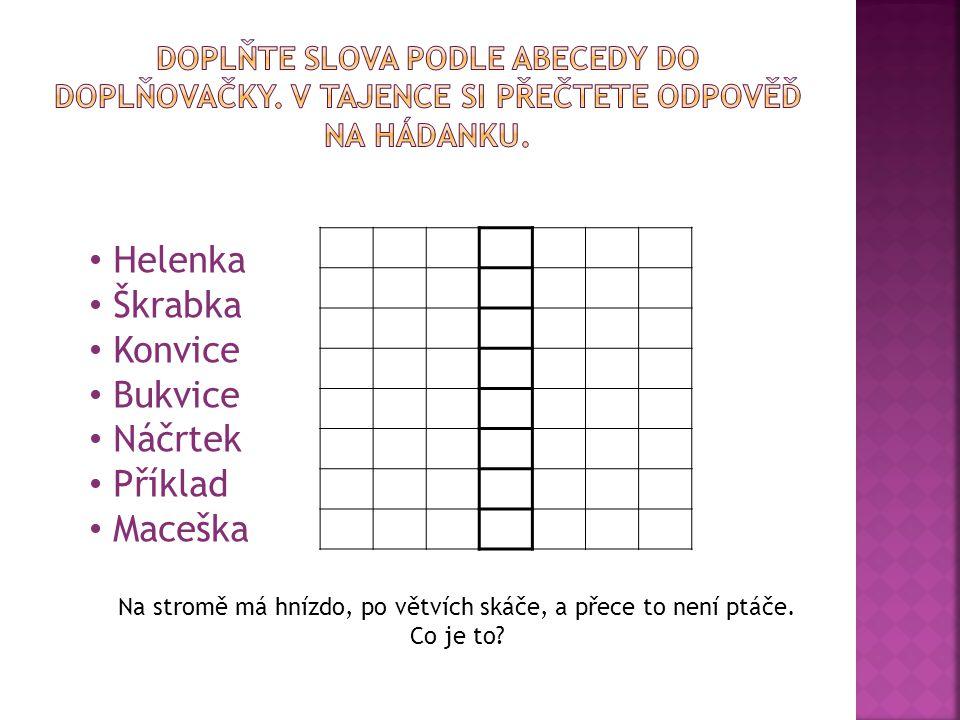 Helenka Škrabka Konvice Bukvice Náčrtek Příklad Maceška