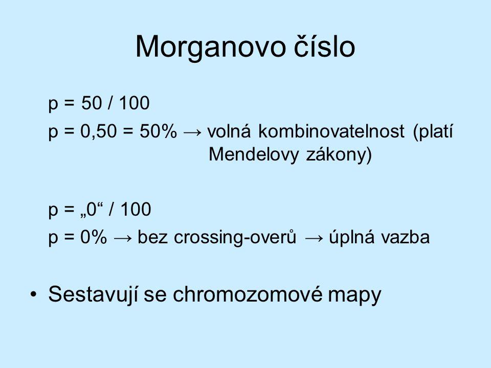 Morganovo číslo p = 50 / 100 Sestavují se chromozomové mapy