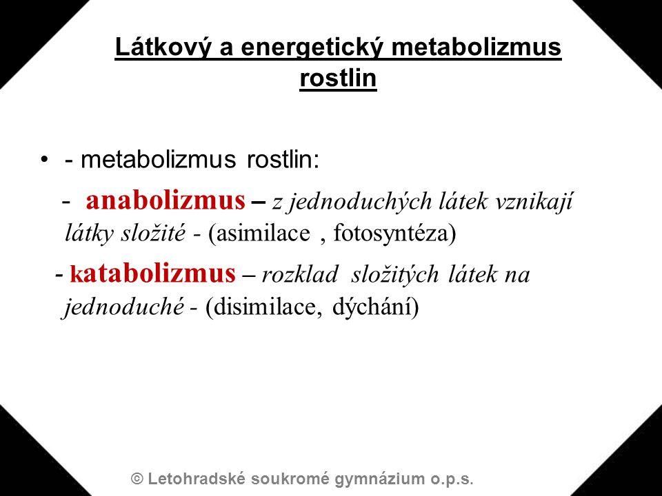 Látkový a energetický metabolizmus rostlin