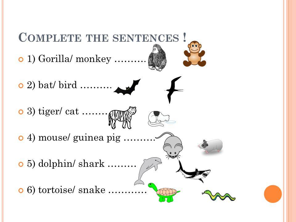 Complete the sentences !