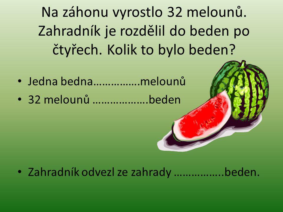 Na záhonu vyrostlo 32 melounů