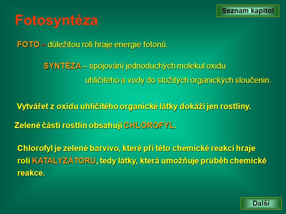 Fotosyntéza FOTO – důležitou roli hraje energie fotonů.