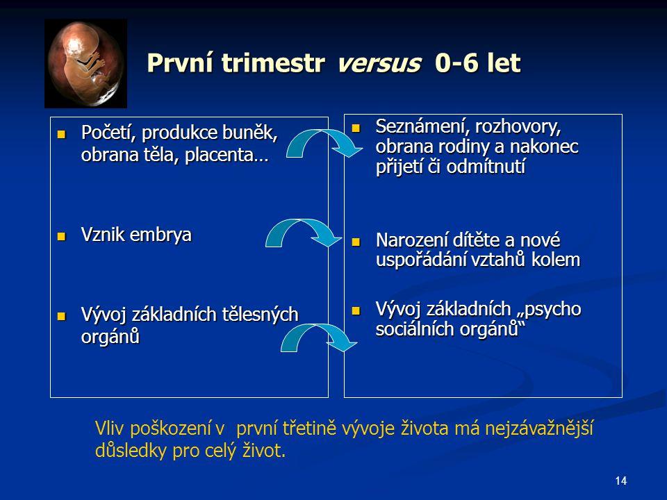 První trimestr versus 0-6 let