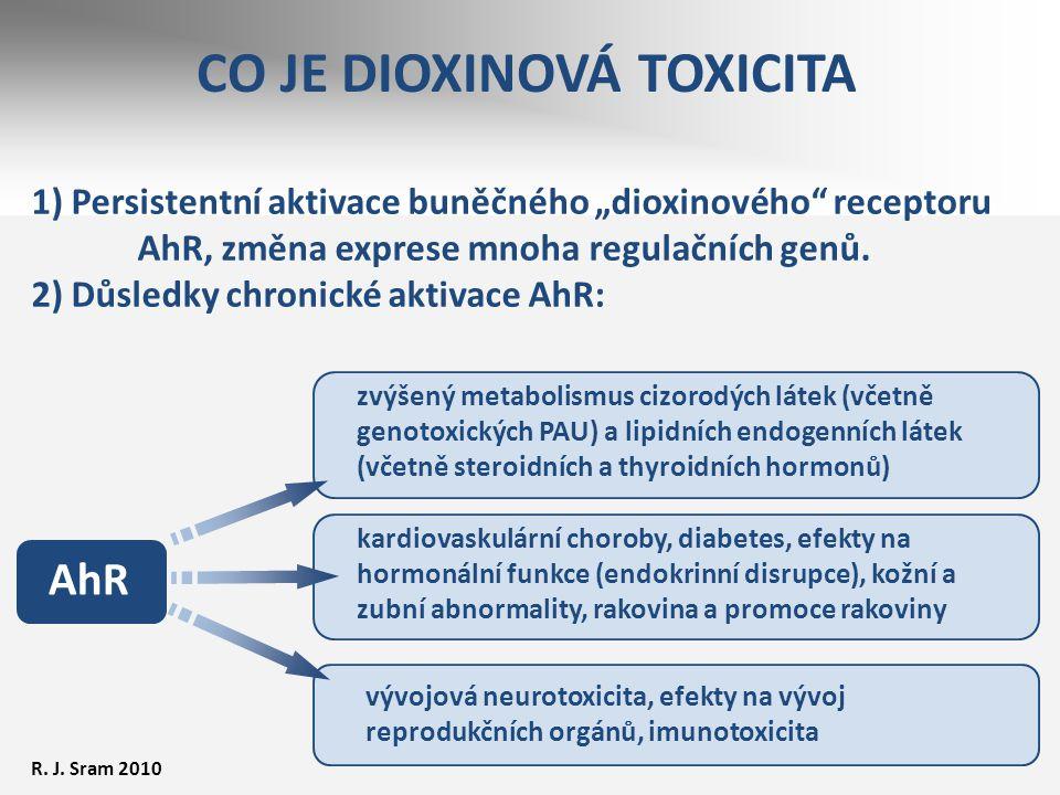 CO JE DIOXINOVÁ TOXICITA