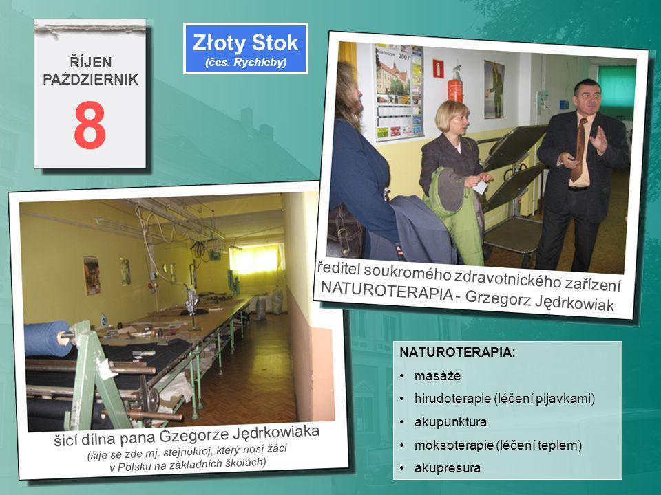 8 Złoty Stok ředitel soukromého zdravotnického zařízení