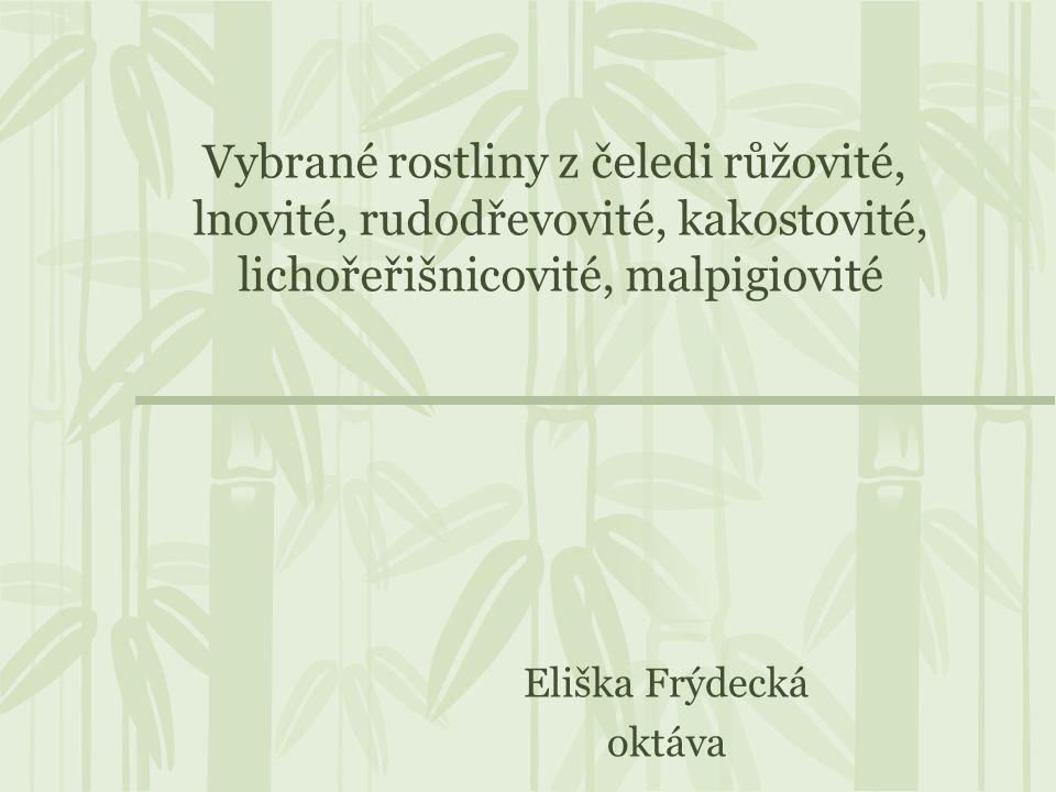 Eliška Frýdecká oktáva