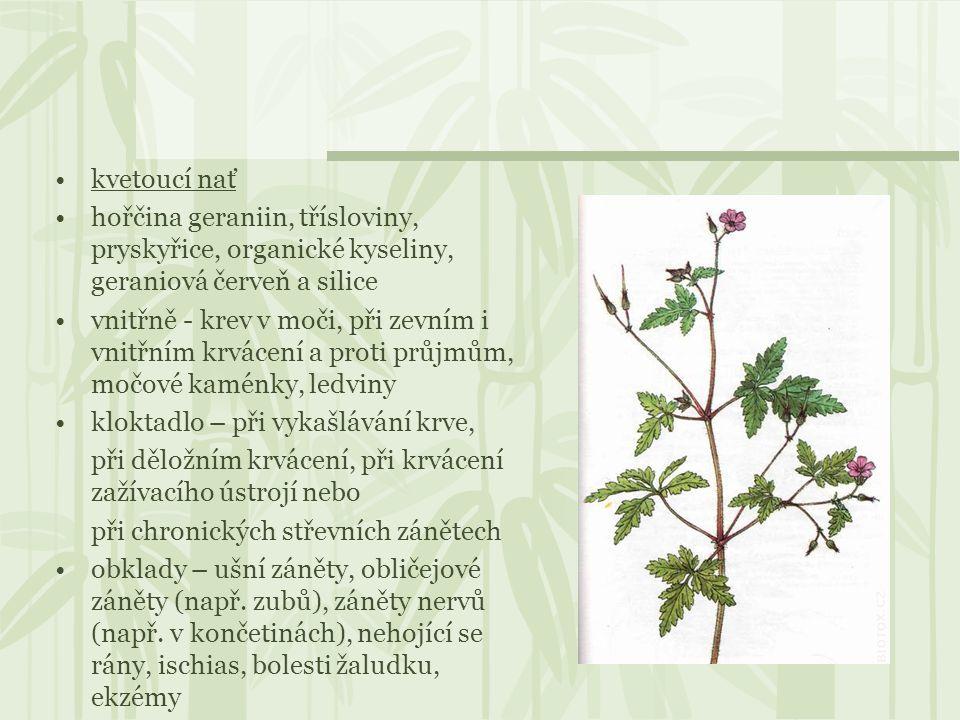 kvetoucí nať hořčina geraniin, třísloviny, pryskyřice, organické kyseliny, geraniová červeň a silice.