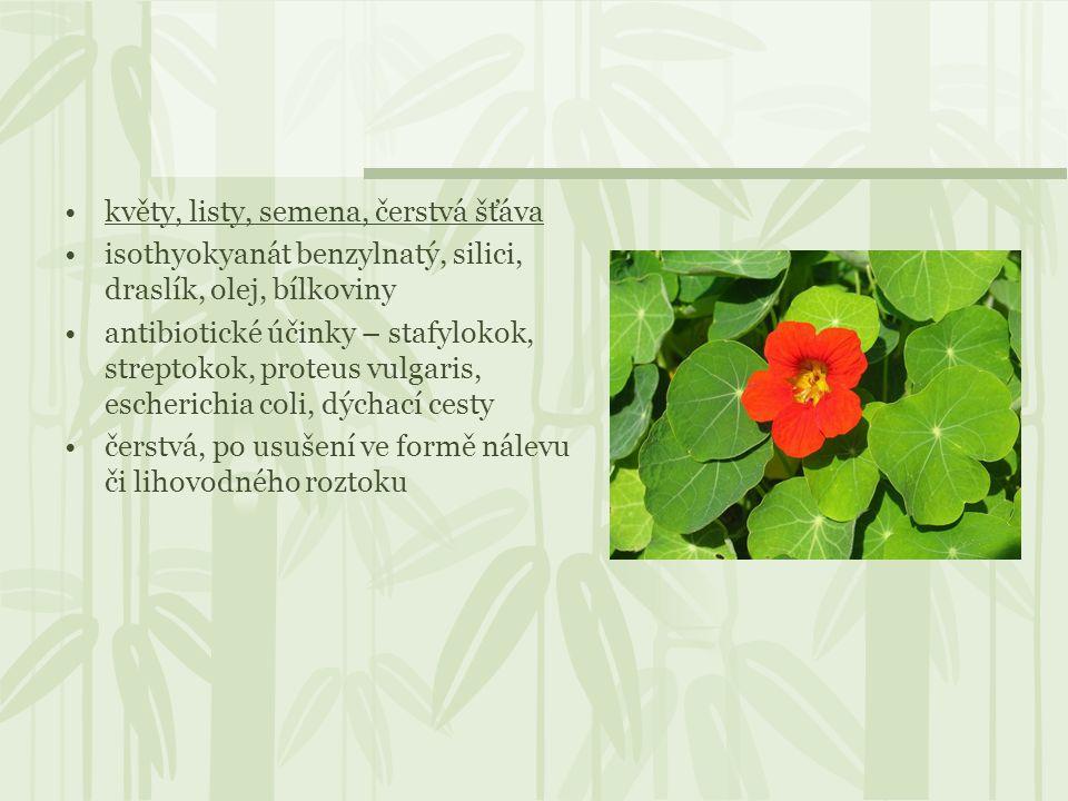 květy, listy, semena, čerstvá šťáva