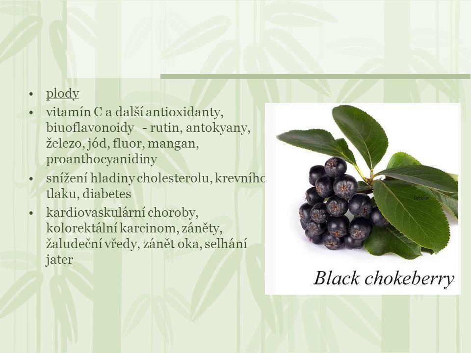 plody vitamín C a další antioxidanty, biuoflavonoidy - rutin, antokyany, železo, jód, fluor, mangan, proanthocyanidiny.