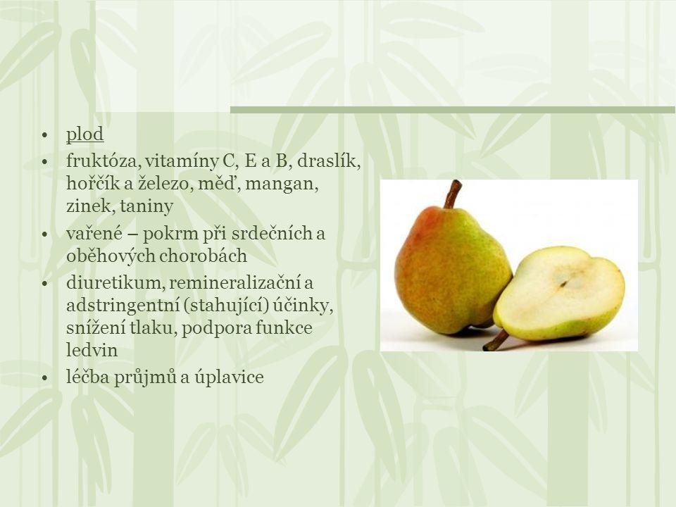 plod fruktóza, vitamíny C, E a B, draslík, hořčík a železo, měď, mangan, zinek, taniny. vařené – pokrm při srdečních a oběhových chorobách.
