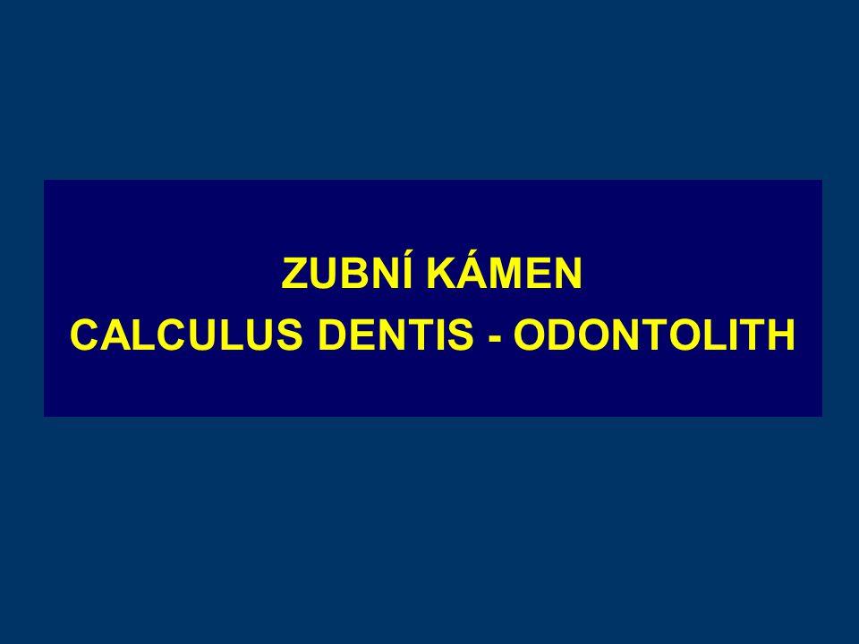 CALCULUS DENTIS - ODONTOLITH
