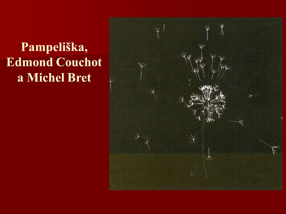 Pampeliška, Edmond Couchot a Michel Bret
