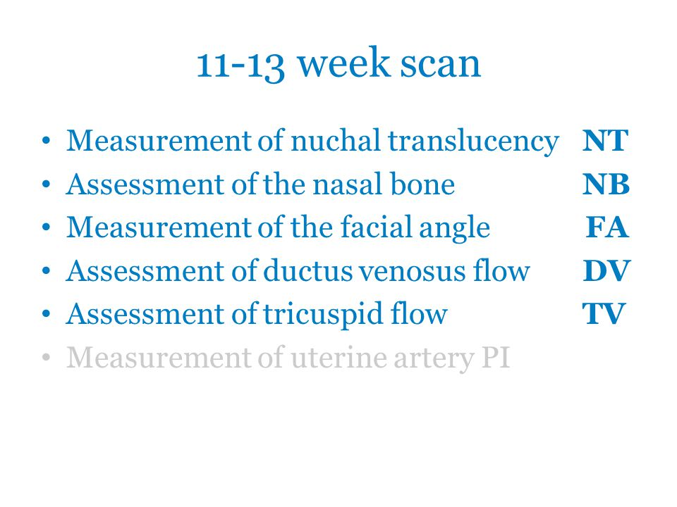 11-13 week scan Measurement of nuchal translucency NT