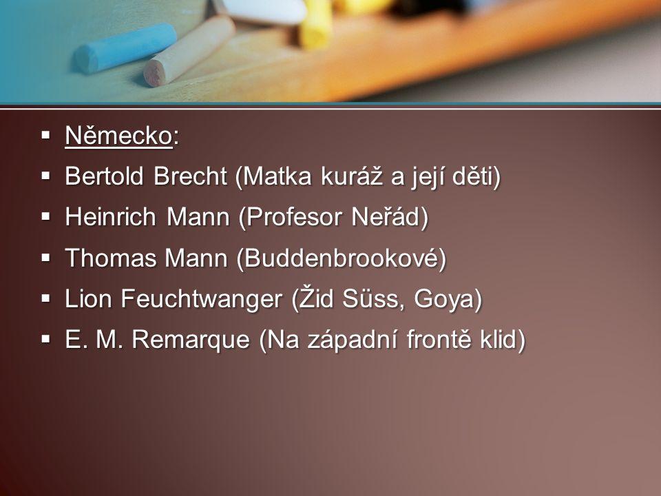 Německo: Bertold Brecht (Matka kuráž a její děti) Heinrich Mann (Profesor Neřád) Thomas Mann (Buddenbrookové)