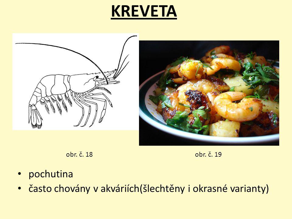 KREVETA obr. č. 18 obr. č. 19 pochutina často chovány v akváriích(šlechtěny i okrasné varianty)