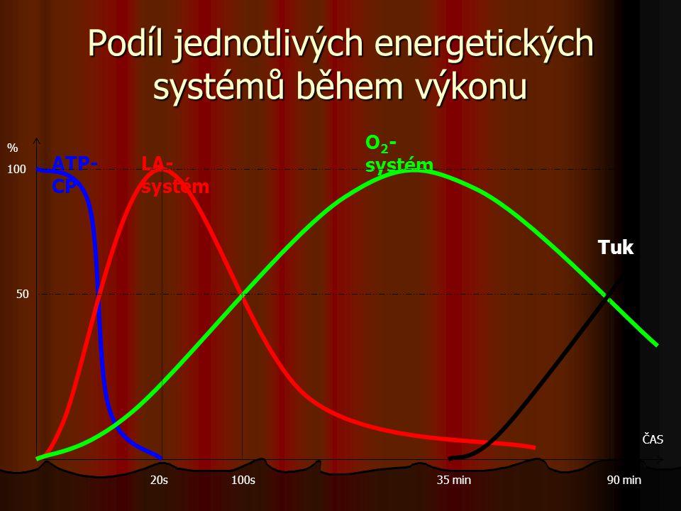 Podíl jednotlivých energetických systémů během výkonu