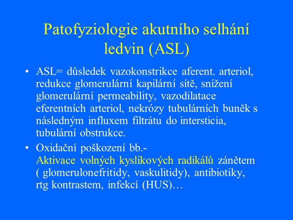 Patofyziologie akutního selhání ledvin (ASL)