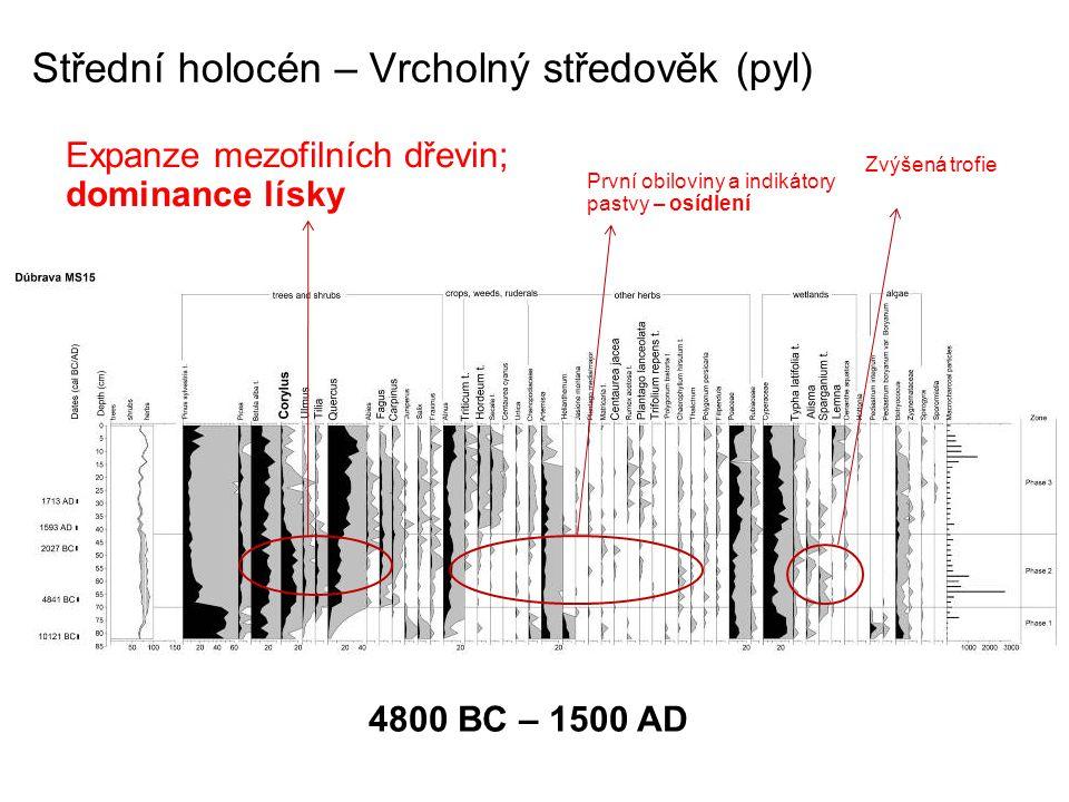 Střední holocén – Vrcholný středověk (pyl)
