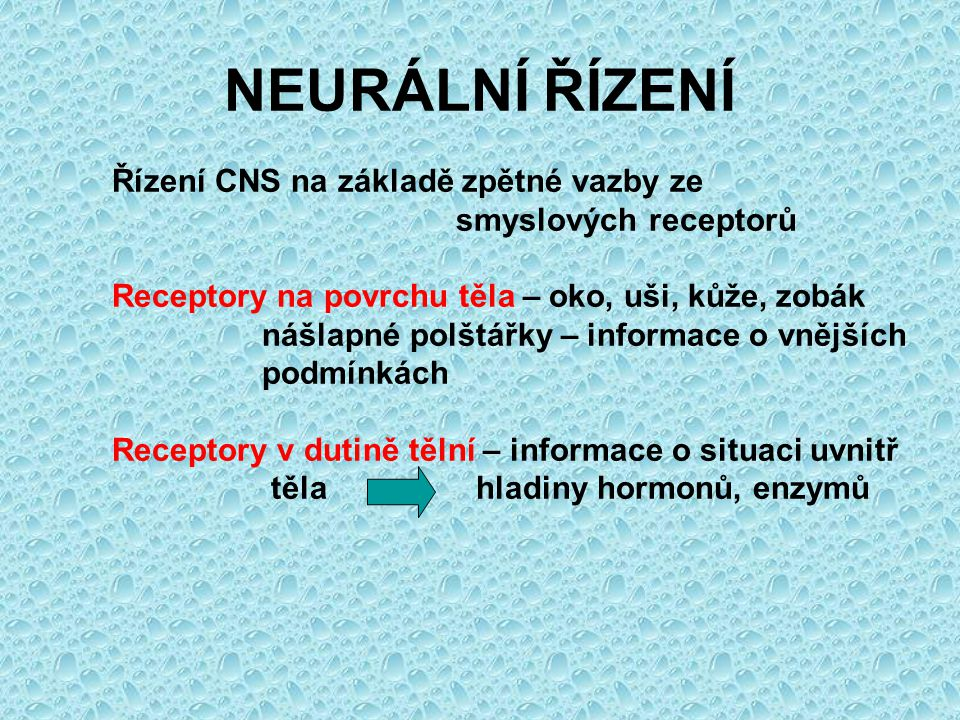 NEURÁLNÍ ŘÍZENÍ Řízení CNS na základě zpětné vazby ze
