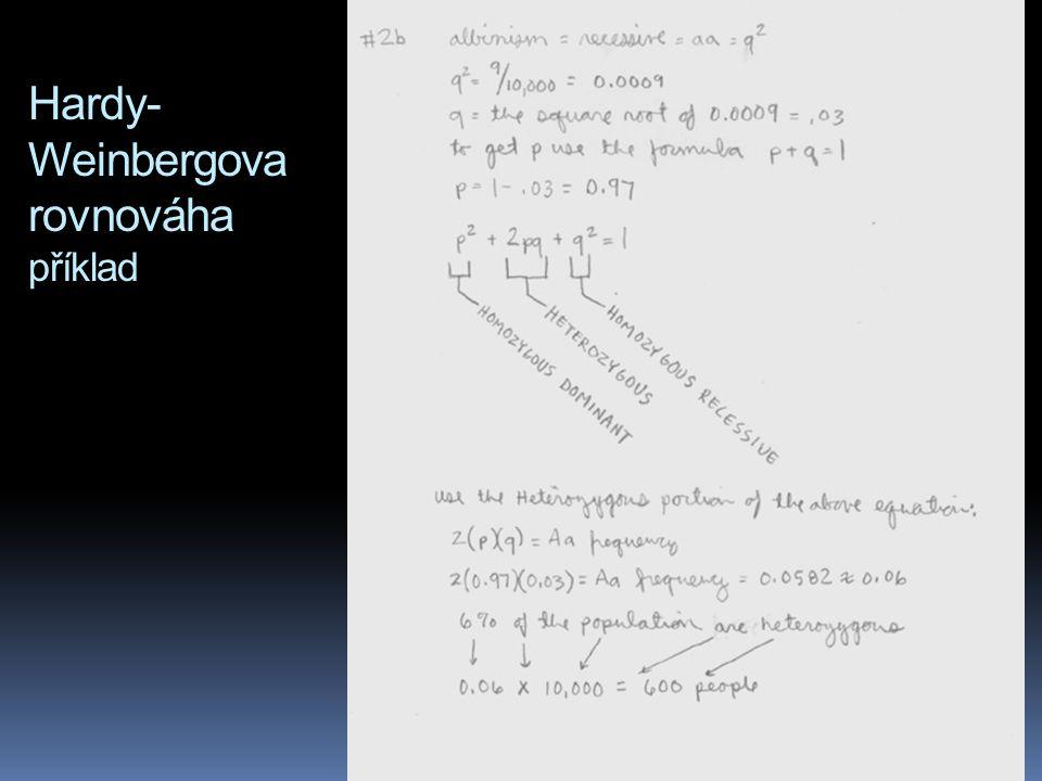 Hardy-Weinbergova rovnováha příklad
