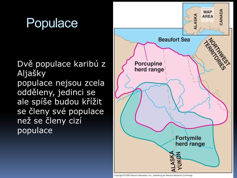Populace Dvě populace karibú z Aljašky