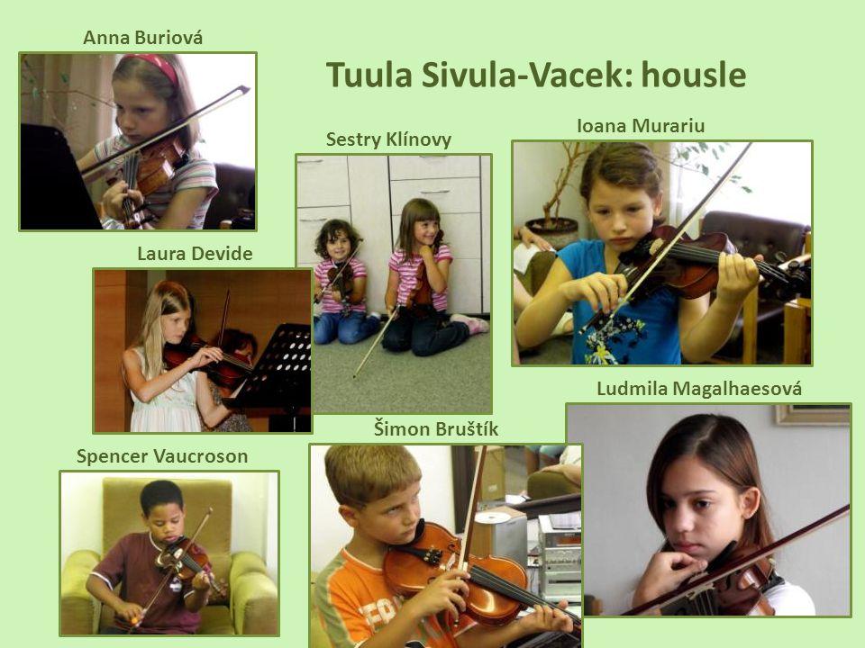 Tuula Sivula-Vacek: housle