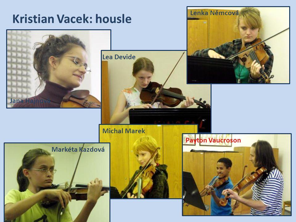 Kristian Vacek: housle