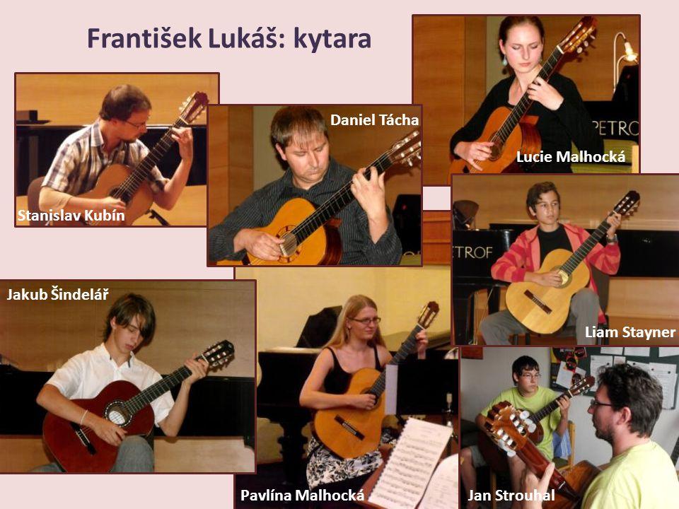 František Lukáš: kytara