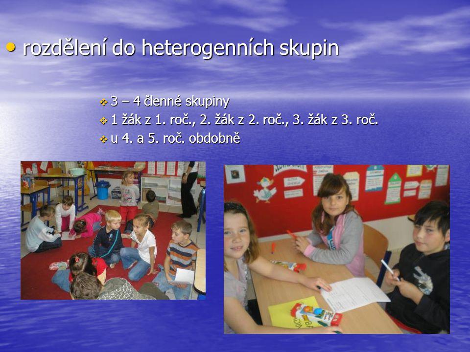rozdělení do heterogenních skupin